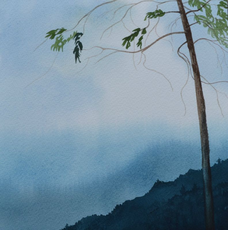 Asheville Watercolor Artists - Watercolor Paintings by Sharyn Fogel
