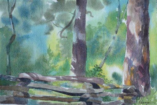 """Sharyn Fogel Watercolor """"Coon Tree"""""""